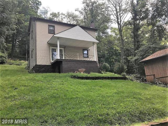 12 Castle Hill, Lonaconing, MD 21539 (#AL10298765) :: Bob Lucido Team of Keller Williams Integrity