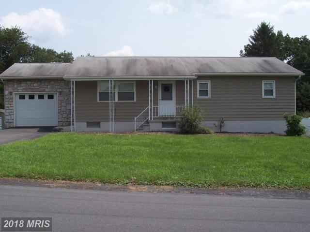 800 White Avenue, Cumberland, MD 21502 (#AL10323017) :: Maryland Residential Team