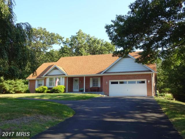 617 Crest Drive, Cumberland, MD 21502 (#AL9757831) :: LoCoMusings