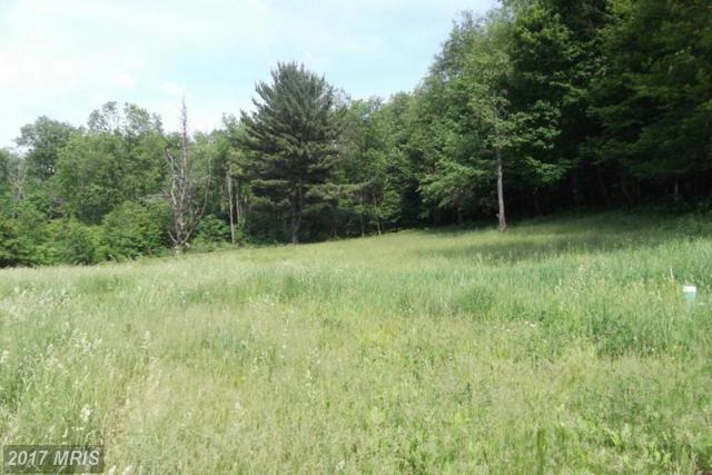 10714 Sines Road, Eckhart Mines, MD 21528 (#AL9905009) :: Pearson Smith Realty