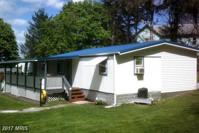 10611 Hoffman Hollow Road, Frostburg, MD 21532 (#AL9928410) :: Pearson Smith Realty