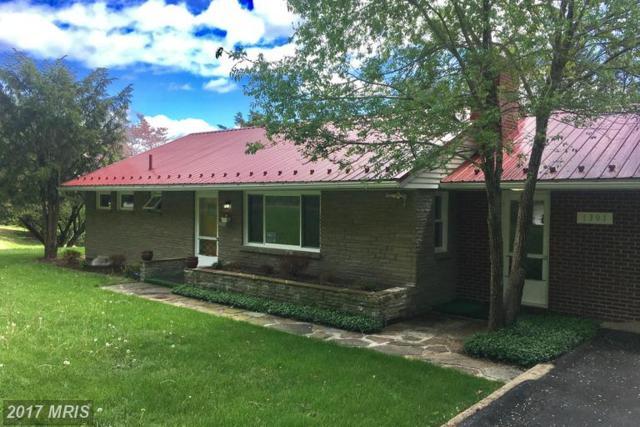 1301 Blake Terrace, Cumberland, MD 21502 (#AL9928618) :: LoCoMusings