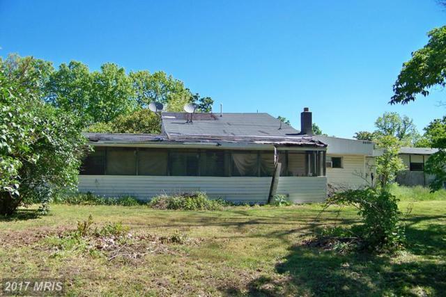 17515 Old Braddock Trail SE, Oldtown, MD 21555 (#AL9941861) :: LoCoMusings