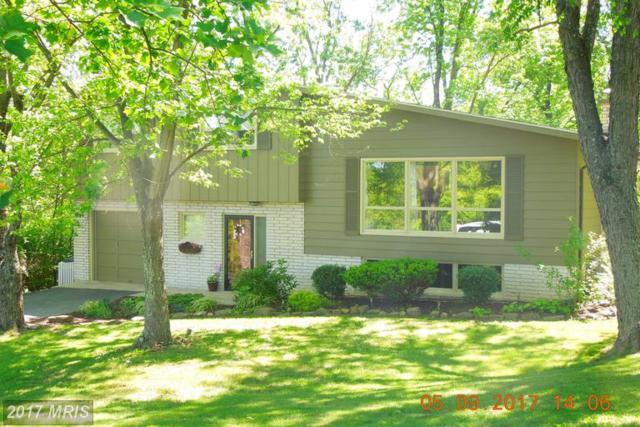 16106 Rawlings Heights Drive, Rawlings, MD 21557 (#AL9941919) :: LoCoMusings