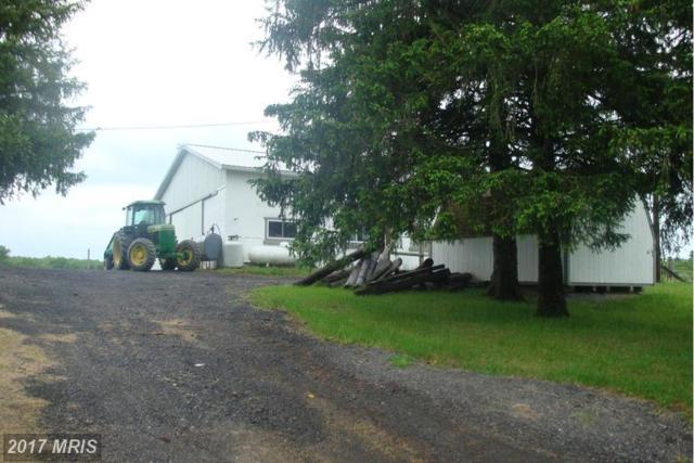 15806 Bear Hill Road SE, Oldtown, MD 21555 (#AL9945805) :: LoCoMusings