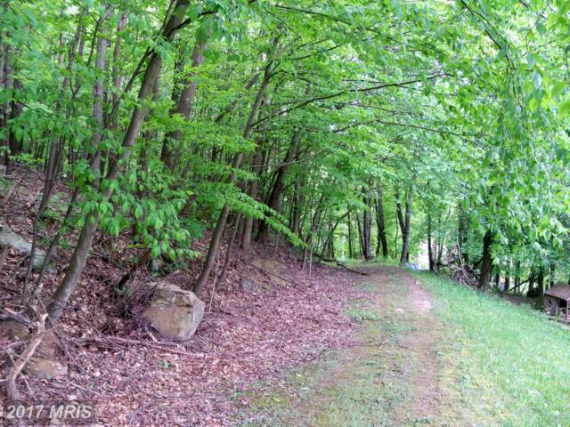 Martin Hollow Road, Midland, MD 21542 (#AL9957346) :: Pearson Smith Realty