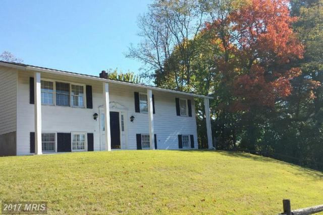 111 Wills Creek Avenue, Cumberland, MD 21502 (#AL9960733) :: LoCoMusings