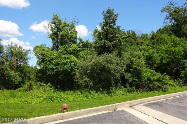 15100 Mcmullen Highway, Cresaptown, MD 21502 (#AL9984938) :: LoCoMusings