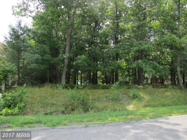 2-LOT Cherrywood Avenue SE, Cumberland, MD 21502 (#AL9995846) :: LoCoMusings