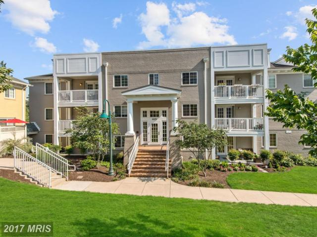 4121 Four Mile Run Drive #302, Arlington, VA 22204 (#AR10022513) :: Pearson Smith Realty