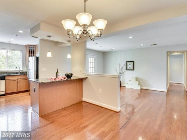 4069 Four Mile Run Drive S #301, Arlington, VA 22204 (#AR10027919) :: Pearson Smith Realty