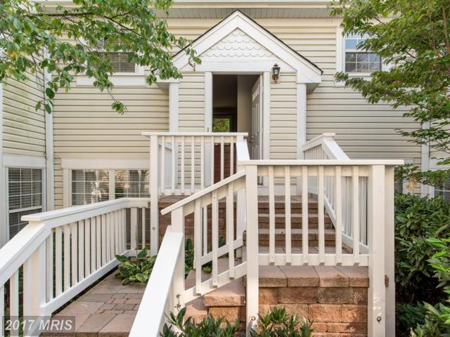 2917-D Woodley Street #1, Arlington, VA 22206 (#AR10055647) :: Pearson Smith Realty
