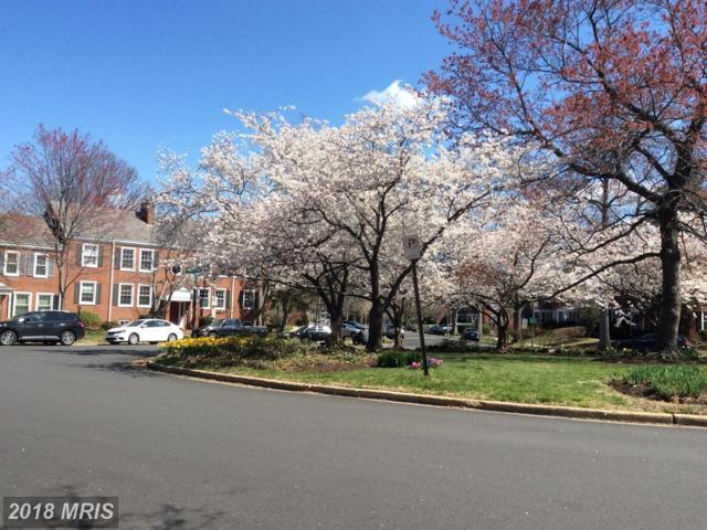 2991 Columbus Street A1, Arlington, VA 22206 (#AR10186747) :: Arlington Realty, Inc.