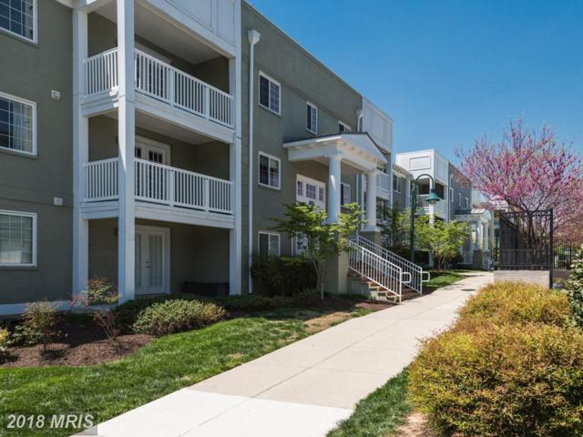 4161 Four Mile Run Drive S #301, Arlington, VA 22204 (#AR10228534) :: Dart Homes