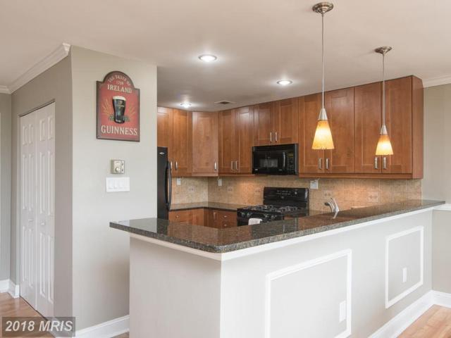 4201 Lee Highway #303, Arlington, VA 22207 (#AR10242884) :: Green Tree Realty