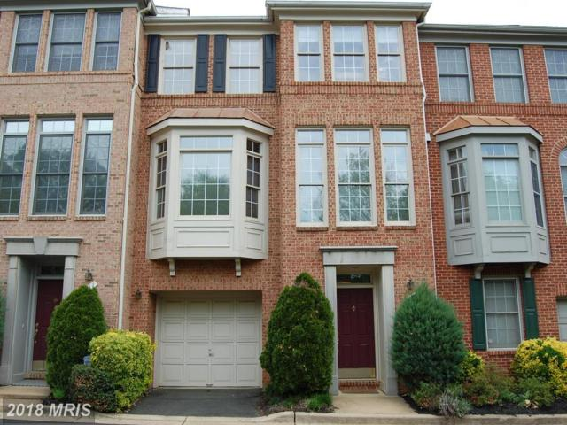 509 Thomas Street N, Arlington, VA 22203 (#AR10249023) :: Arlington Realty, Inc.