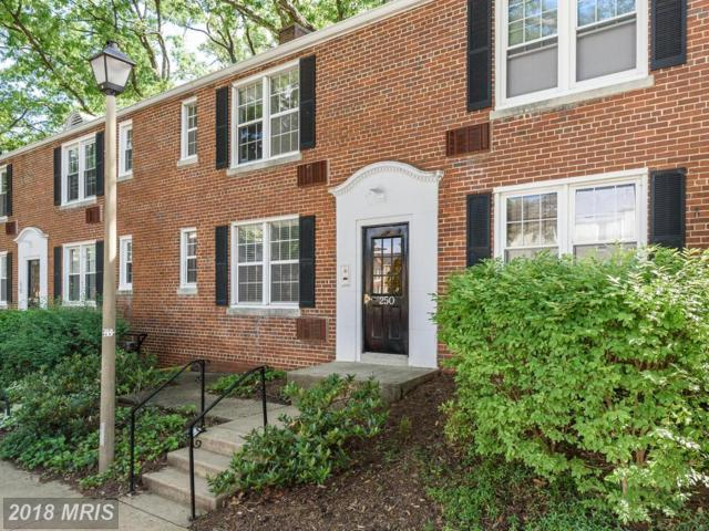 250 Thomas Street 250-1, Arlington, VA 22203 (#AR10250505) :: Arlington Realty, Inc.