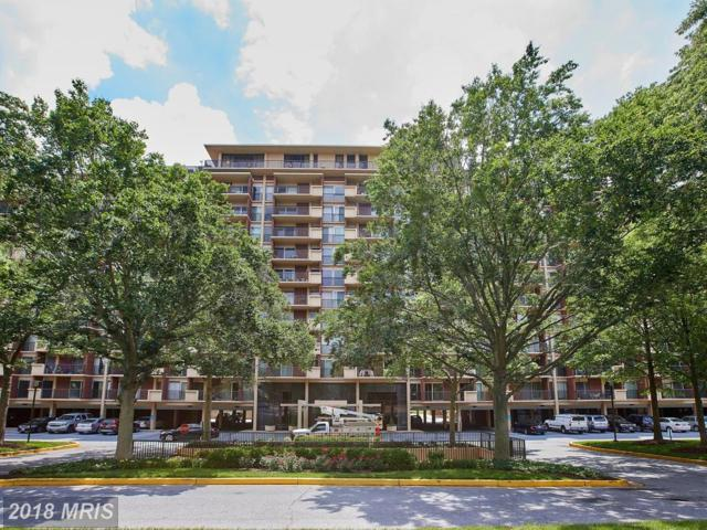 1300 Army Navy Drive #208, Arlington, VA 22202 (#AR10258053) :: The Withrow Group at Long & Foster