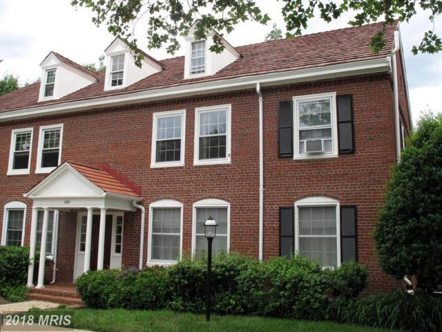 3251 Stafford Street S A1, Arlington, VA 22206 (#AR10264537) :: The Foster Group