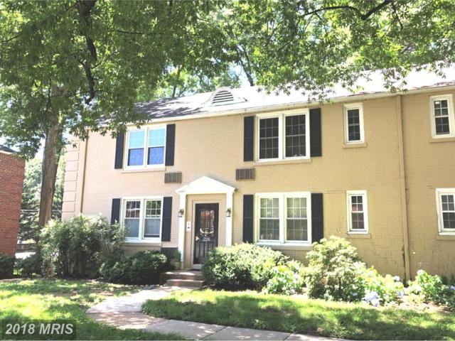 226 Thomas Street 226-3, Arlington, VA 22203 (#AR10268075) :: Gail Nyman Group