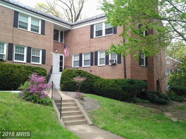 5101 10TH Street S #4, Arlington, VA 22204 (#AR10279189) :: Provident Real Estate