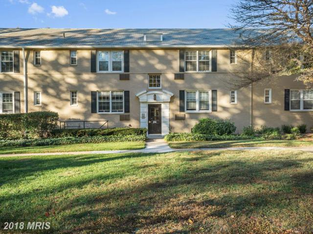 214 George Mason Drive 214-4, Arlington, VA 22203 (#AR10288763) :: Gail Nyman Group