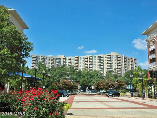 1101 Arlington Ridge Road #204, Arlington, VA 22202 (#AR10298609) :: TVRG Homes