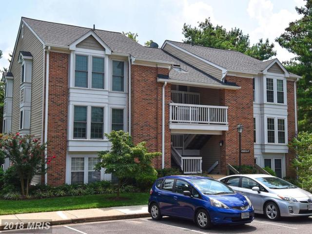 4500 28TH Road S F, Arlington, VA 22206 (#AR10333360) :: The Belt Team