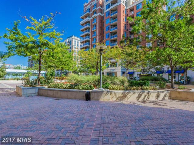 3650 Glebe Road #443, Arlington, VA 22202 (#AR9876772) :: LoCoMusings
