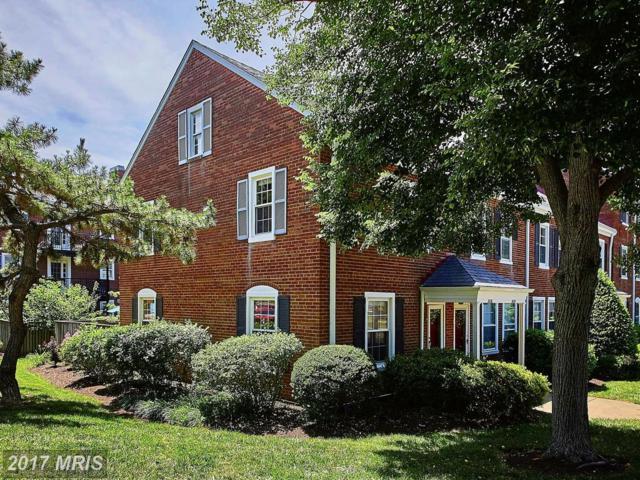 3036 Abingdon Street S, Arlington, VA 22206 (#AR9983093) :: LoCoMusings