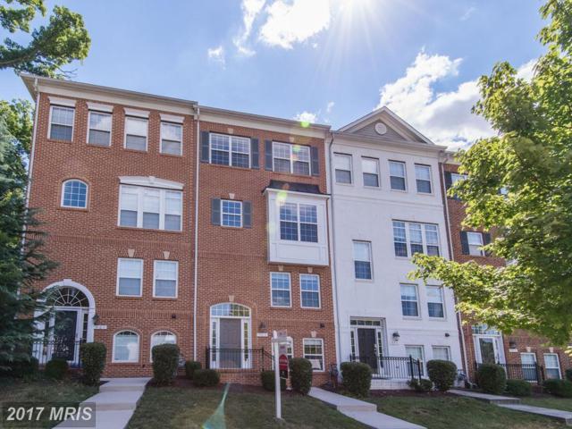 969 Randolph Street S, Arlington, VA 22204 (#AR9995828) :: Pearson Smith Realty