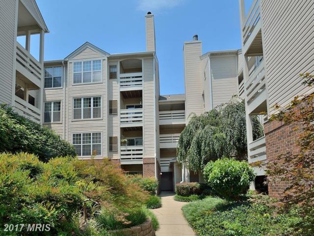 244 Reynolds Street S #212, Alexandria, VA 22304 (#AX10005065) :: Pearson Smith Realty