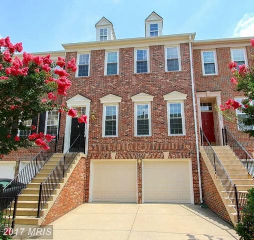 4607 Latrobe Place, Alexandria, VA 22311 (#AX10015598) :: Arlington Realty, Inc.