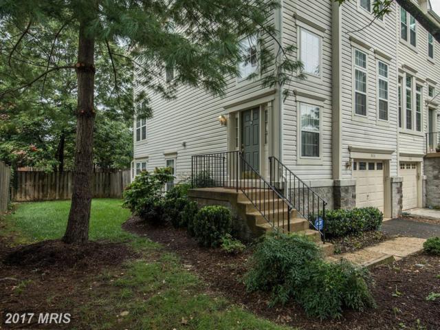 3828 Elbert Avenue, Alexandria, VA 22305 (#AX10029288) :: Pearson Smith Realty