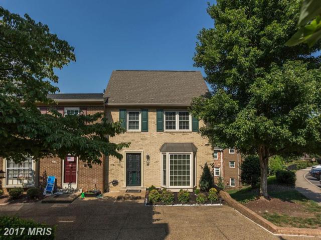 718 Armistead Street N, Alexandria, VA 22312 (#AX10038319) :: Pearson Smith Realty