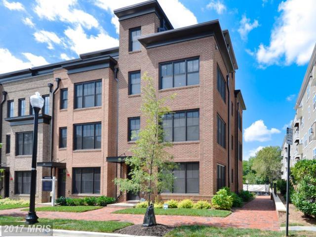 413 Payne Street S, Alexandria, VA 22314 (#AX10048249) :: Pearson Smith Realty