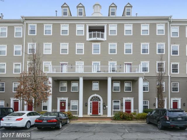 1304 Roundhouse Lane #304, Alexandria, VA 22314 (#AX10049611) :: Pearson Smith Realty
