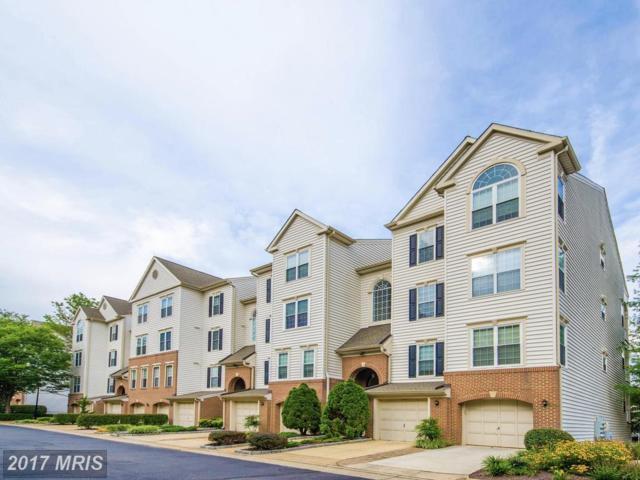 4656 Lambert Drive #1, Alexandria, VA 22311 (#AX10054838) :: Pearson Smith Realty