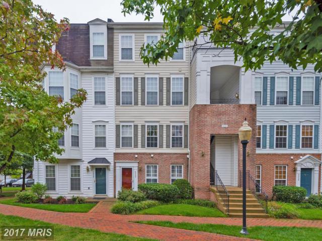 5082 English Terrace, Alexandria, VA 22304 (#AX10057344) :: Pearson Smith Realty