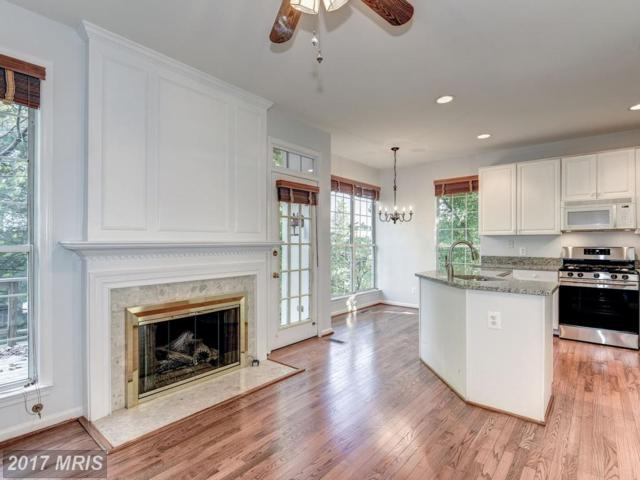 37 Arell Court, Alexandria, VA 22304 (#AX10086416) :: Browning Homes Group