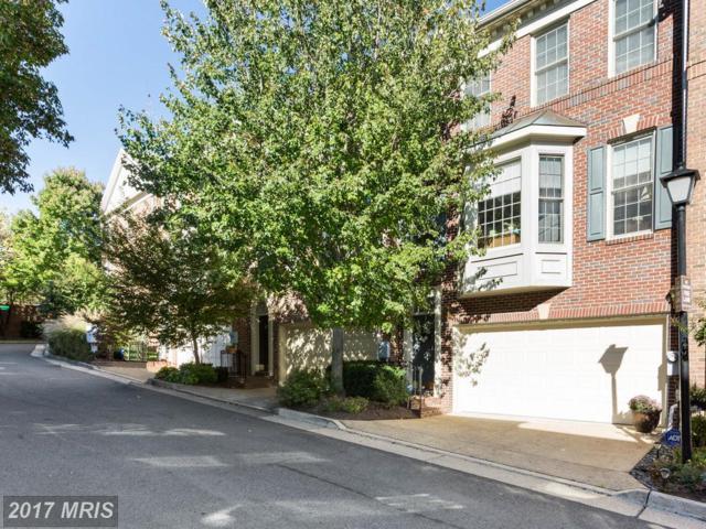 4633 Knight Place, Alexandria, VA 22311 (#AX10086909) :: The Cruz Group