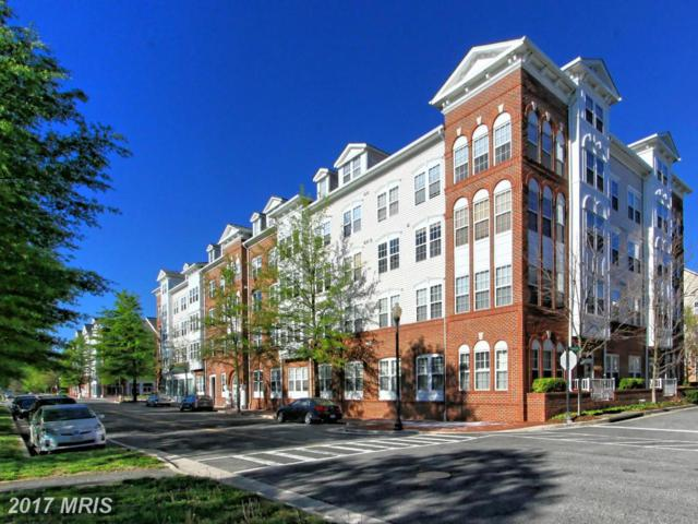 171 Somervelle Street #205, Alexandria, VA 22304 (#AX10107486) :: Growing Home Real Estate