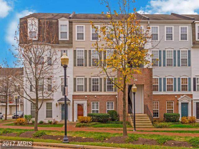 5082 English Terrace, Alexandria, VA 22304 (#AX10117901) :: The Gus Anthony Team