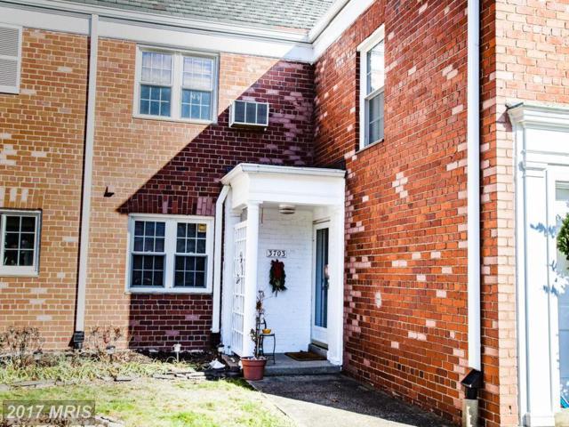 3703 Gunston Road #209, Alexandria, VA 22302 (#AX10125247) :: Pearson Smith Realty
