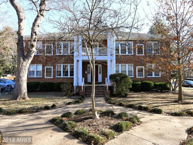 306 Duncan Avenue #F, Alexandria, VA 22301 (#AX10128257) :: Pearson Smith Realty
