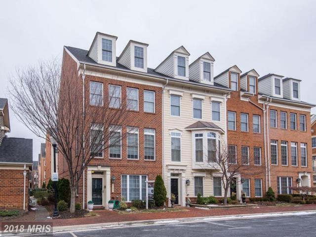 5235 Harold Secord Street, Alexandria, VA 22304 (#AX10132914) :: Pearson Smith Realty