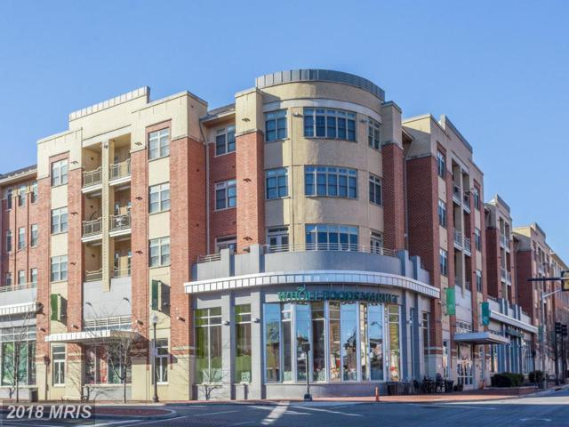 309 Holland Lane #226, Alexandria, VA 22314 (#AX10133310) :: Pearson Smith Realty