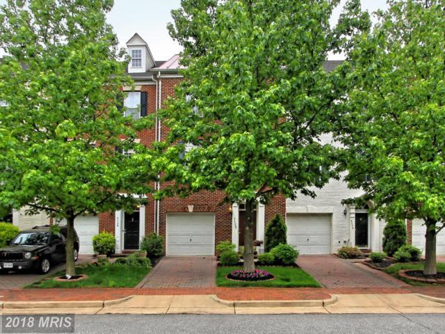 5132 Grimm Drive, Alexandria, VA 22304 (#AX10135188) :: Pearson Smith Realty