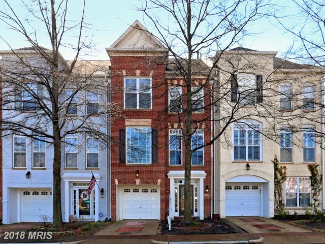 5032 Gardner Drive, Alexandria, VA 22304 (#AX10161426) :: Labrador Real Estate Team