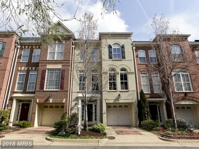 5009 Barbour Drive, Alexandria, VA 22304 (#AX10164002) :: Great Falls Great Homes